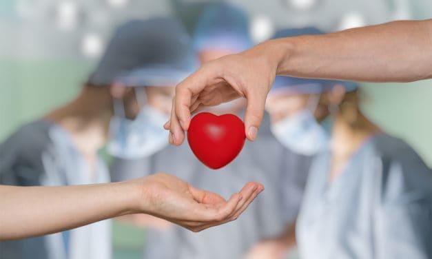 Das sind die 9 Schritte bei einer Organspende