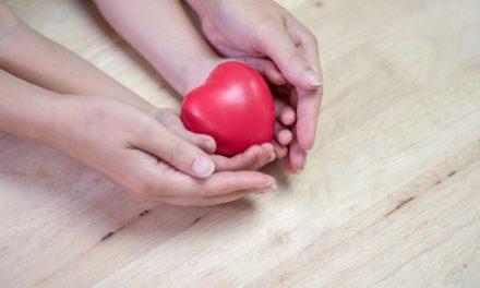 Wichtige Infos zur Organspende
